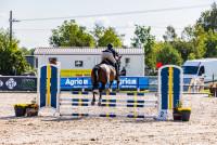villavagn häst